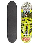 Shaun WHITE-5 Channel